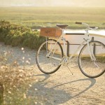 Retro and Cool Bike, The Almond X Linus Summer Edition bike_1