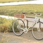 Retro and Cool Bike, The Almond X Linus Summer Edition bike_5