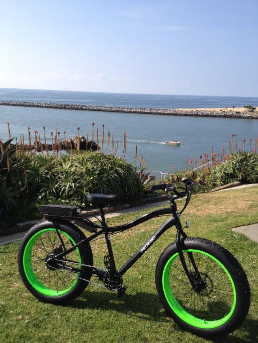 Pedegos Trail Tracker Electric Fat bike 4