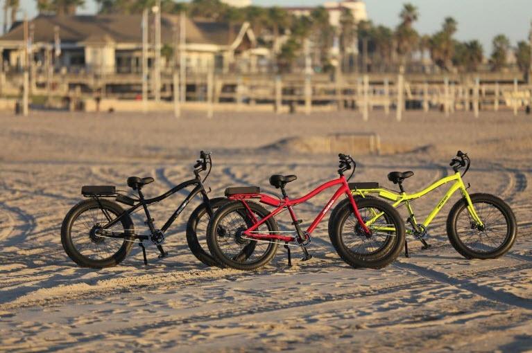 Pedegos Trail Tracker Electric Fat bike 5