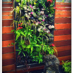 Green your Wall with Vertical Garden Planters_10