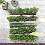 Green your Wall with Vertical Garden Planters_4