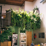 Green your Wall with Vertical Garden Planters_6