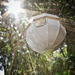 Sleep In The Trees With Cocoon Tree_4