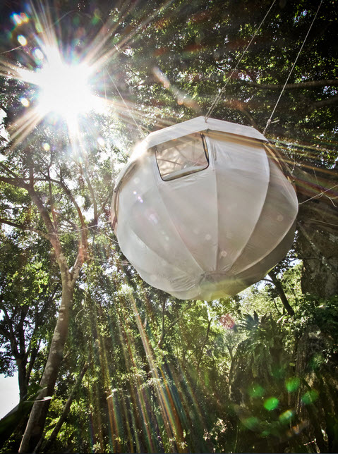 Sleep In The Trees With Cocoon Tree 4