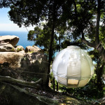 Sleep In The Trees With Cocoon Tree_7