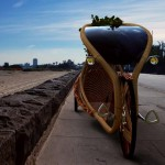The Ajiro Bamboo Bike   Naturally Grown Urban Personal Mobility